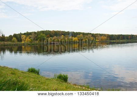 Autumnal Forest On Bank Of A Pond