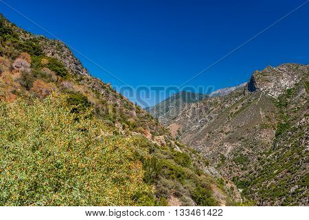 View At Highway 180, Kings Canyon National Park, California, Usa