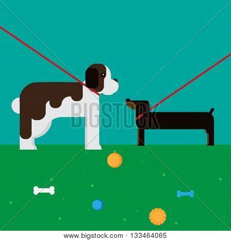 flat dog characters set, cartoon pet animal collection, st bernard and dachshund, vector