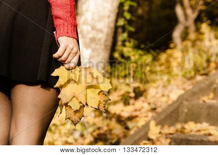 Part of body people autumn concept. Sexy legs in the park. Woman has black skirt and holding leaves in hand.