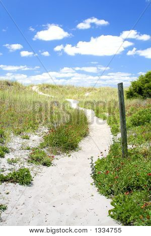 Path To A Carolina Beach