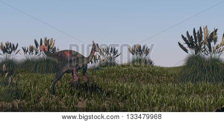 3d illustration of the gigantoraptor walking in grassland