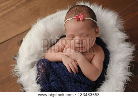 Eleven day old newborn baby girl sleeping in a little fur lined bucket. She is wrapped in a blue scarf. Shot in the studio on a wood background.