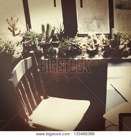 Interior Vintage Workplace Houseplant Concept