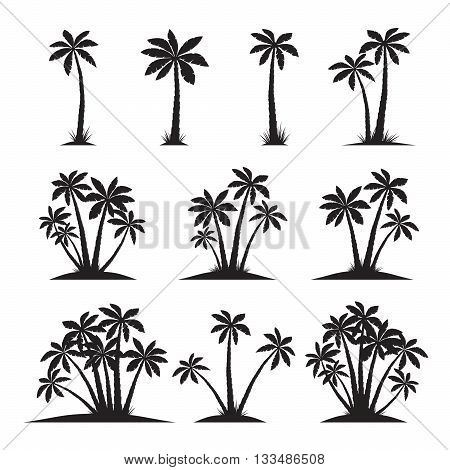 Vector Illustration of Palm Trees. Black Collection.