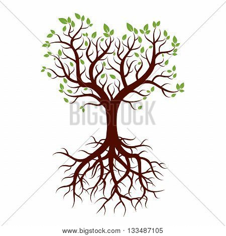 Spring Tree with Leafs and Roots. Vector Illustration.