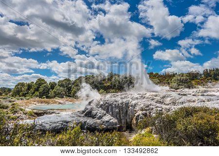 Pohutu Geyser - Rotorua - North Island - New Zealand