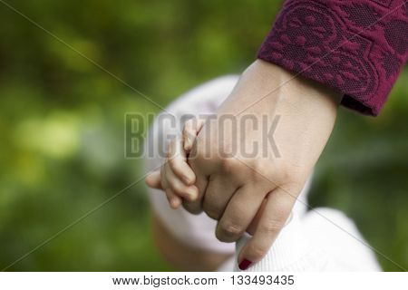 the mother holds the child's hand on a walk in the summer