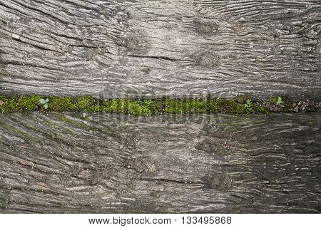 background old lumber floor in garden sort