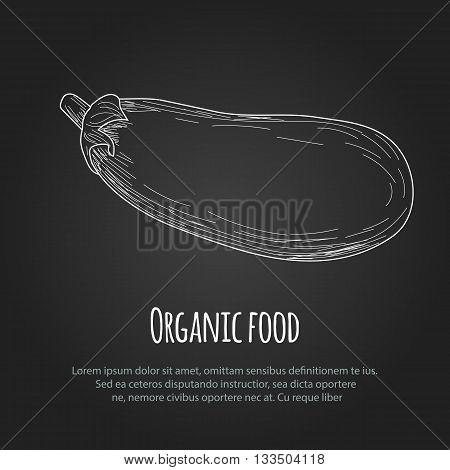 Hand drawn eggplant over white background. Vector