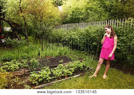 teen pretty girl in pink summer dress in summer garden with strawberries