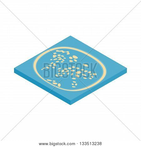 Artificial islands in the UAE icon in isometric 3d style isolated on white background. Stay on islands symbol