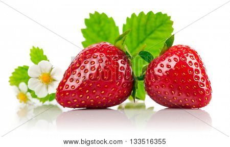 Strawberries with green leaf and flowers isolated on white background