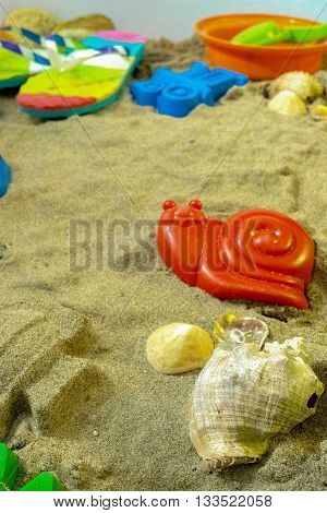Beach toys in the sand with shells