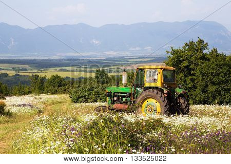 Farmer driving a tractor through an agricultural field with spring wildflowers with a scenic backdrop of a forested valley farmland and a mountain range