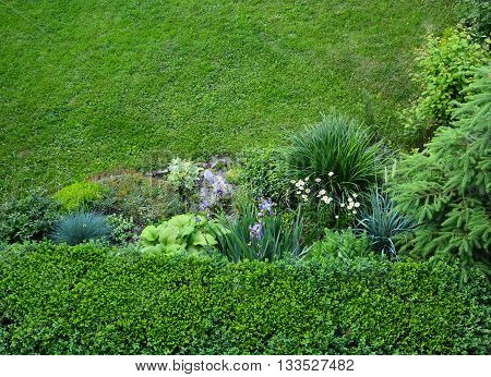 Landscaping . Garden , flowerbed , bushes , flowers , lawn.