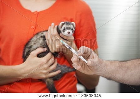 Doctor's Hand Holding Injection While Woman Holding Weasel