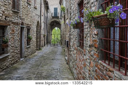 Old narrow street arch flowers and houses in Mombaldone Piedmont Italy.