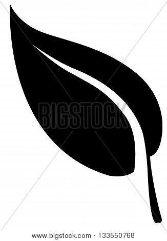 leaf vector symbol computer icon illustration digitally generated image