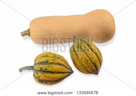 One Butternut and Two Acorn Squash on White