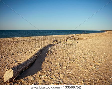 tranquil landscape background with lonely trunk on sand beach