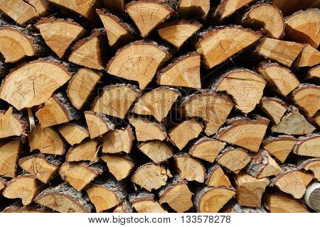 Background of Firewood stack on Staple in the Forest