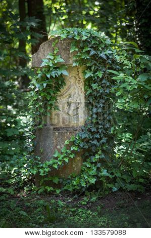 idyllic overgrown grave with ivy