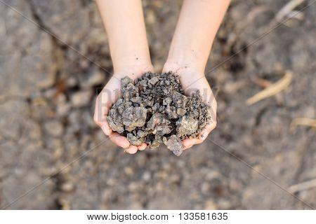 Crack Soil On Hand
