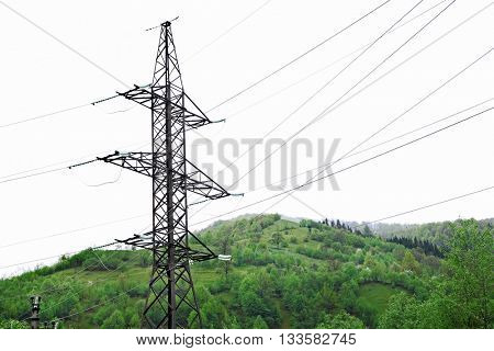 Electric pole in the nature