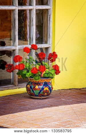 A red potted geranium outside a home in St George's Bermuda.