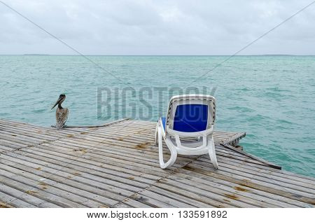 Empty beach chairs with pelican on the dock in Cayo Guillermo - Ciego de Avila Province, Cuba.