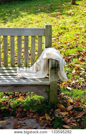 Beautiful Bench In The Autumn Park At The Beginning Of The Autumn