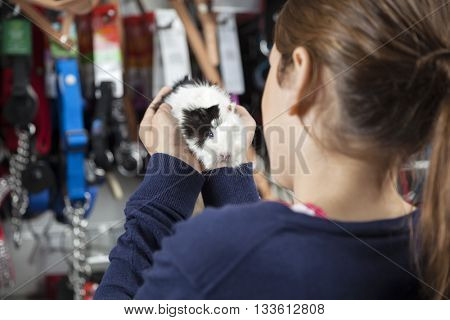 Rear View Of Girl Holding Guinea Pig