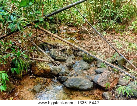 River flowing through rocks and a large stone in jungle of Khao Sok National Park Surat Thani Province Thailand.