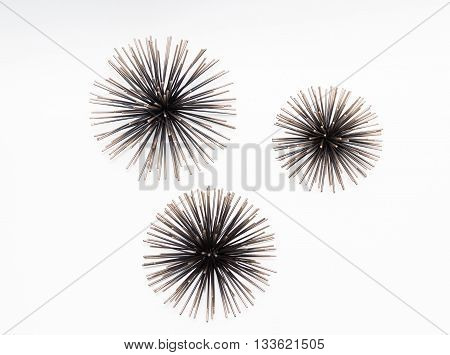 amazing great view of decorated sea urchins isolated on light grey background