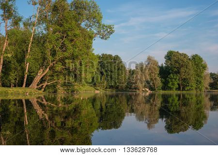 Summer landscape in the Palace of Gatchina park. Trees reflected in the water of the lake. Gatchina St. Petersburg Russia.
