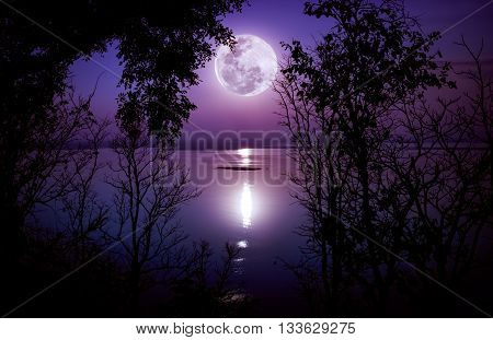 Silhouettes Of Woods And Beautiful Moonrise, Bright Full Moon Would Make A Great Picture. Outdoors.