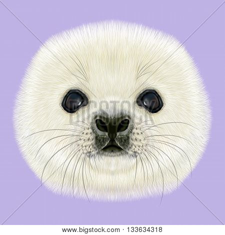 Illustrated Portrait of Harp Seal Pup. Cute fluffy face of Harp Seal baby on violet background.