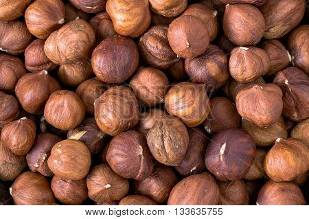 Raw hazelnuts background, nuts background, texture of nuts