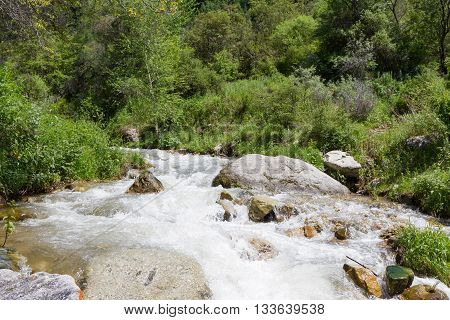 Stormy Mountain River Among Stones