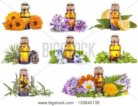 collage of different kinds of essential oils