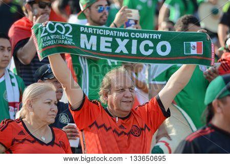 Soccer Fan During Copa America Centenario