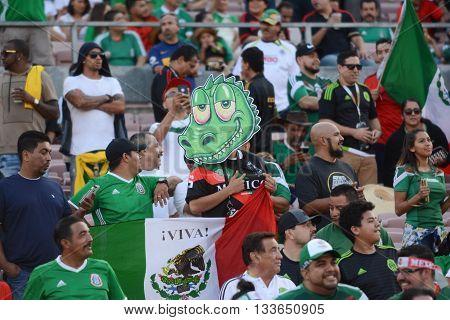 Soccer Fans During Copa America Centenario