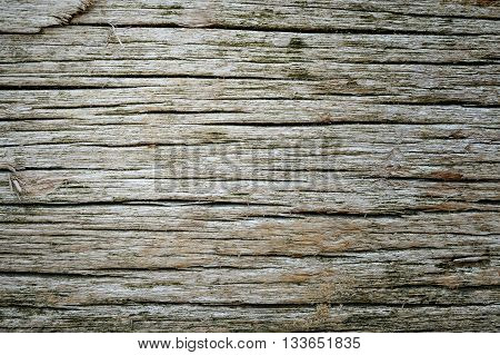 High quality cackground made of old rotten wood