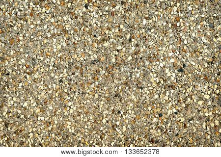 Terrazzo background, texture with multi colored stones