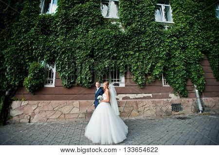 Newlywed On The Background Of House In Plants