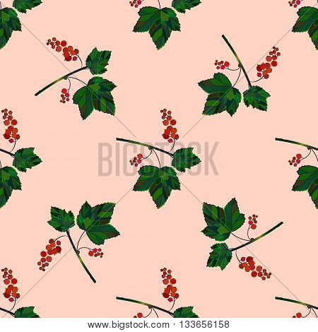 Colored currant seamless pattern. Vector currant background. Seamless pattern with colored hand draw graphic currantberries. Vector red berries template.