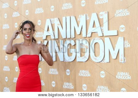 LOS ANGELES - JUN 8:  Daniella Alonso at the Animal Kingdom Premiere Screening at the The Rose Room on June 8, 2016 in Venice Beach, CA
