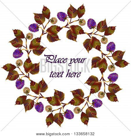 Frame - wreath. Blackberry berries and leaves. Vector isolated object on white background. Round frame of purple summer garden berries - blackberries.