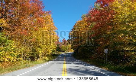 Typical USA road in Vermont during Fall